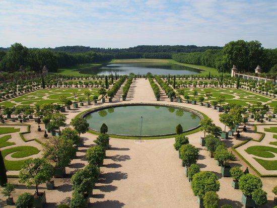 SANDEMANs NEW Paris Tours : Orange groves