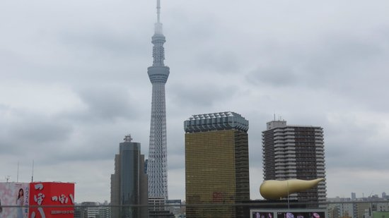 Asakusa Culture Tourist Information Center: 展望テラスからの東京スカイツリー