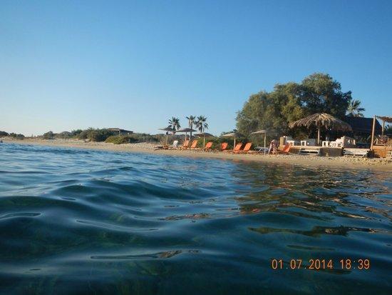 Medusa Resort: Strand