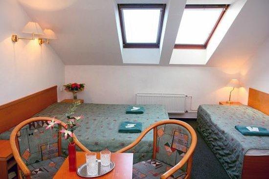 Hotel Amadeus : attic room in third floor