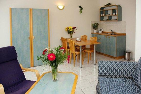 Hotel Amadeus : kitchennette in apartment