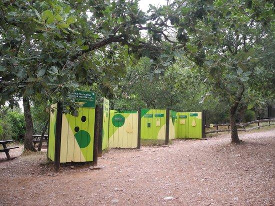 Le village des Tortues : Викторина с вопросами