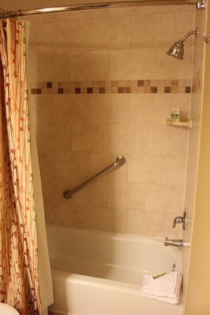 Holiday Inn Club Vacations At Orange Lake Resort: Shower/bathtub