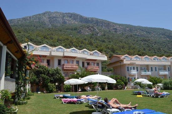 Turquoise Hotel: Het hotel