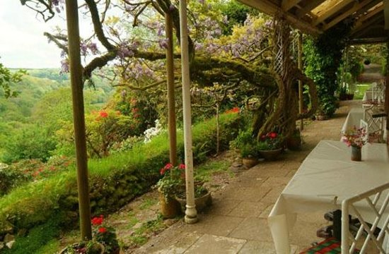 Hazelwood House: The lovely Veranda with valley views!