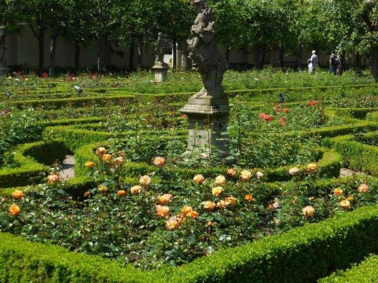 Rosengarten der Neuen Residenz: Viele Standbilder inmitten eines