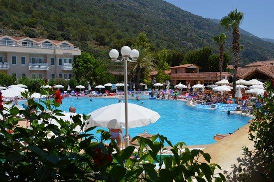 Turquoise Hotel: Het zwembad