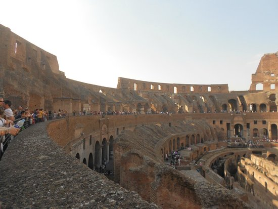 Coliseo: Standing Tall