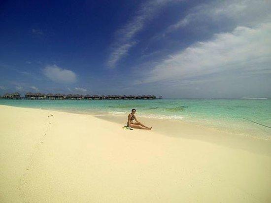 Adaaran Prestige Vadoo : beach