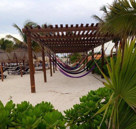 Ocean Maya Royale: Beachfront hammocks !