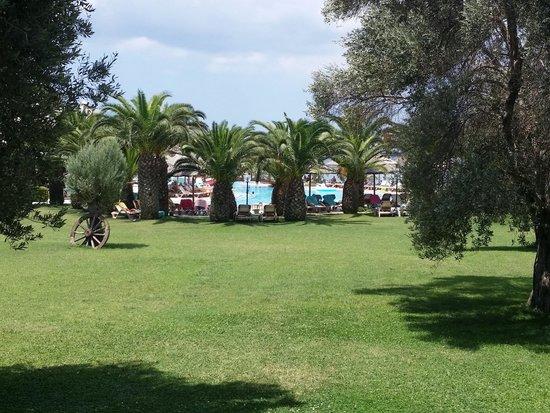 Hotel Samara : Un des jardins