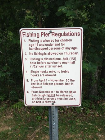 Fishing pier regulations picture of herbert holt park for Fishing license tn