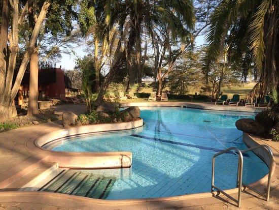 Amboseli Serena Safari Lodge: The pool in the Amboseli National Park Serena Hotel