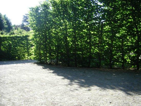 Schonbrunner Gardens: Очень милый уголок