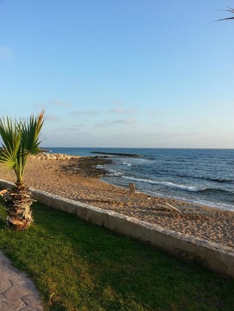 Aquamare Beach Hotel & Spa: Beach