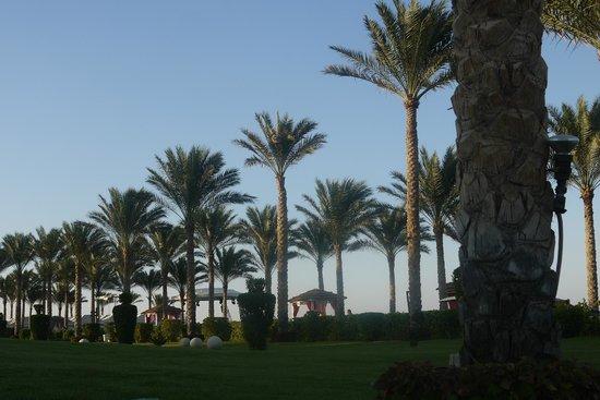 Rixos Sharm El Sheikh: immaculate gardens