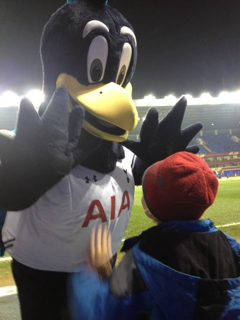 White Hart Lane: Chirpy with a young Spurs fan