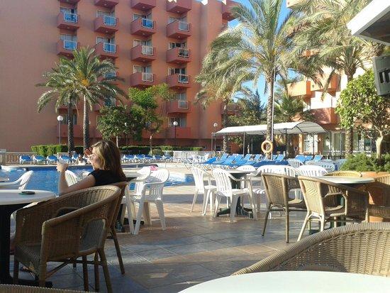 OLA Hotel Maioris : vue bar piscine