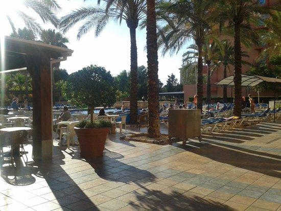 OLA Hotel Maioris: vue piscine