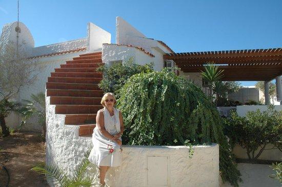 Oasi di Casablanca Hotel: una splendida pianta di capperi