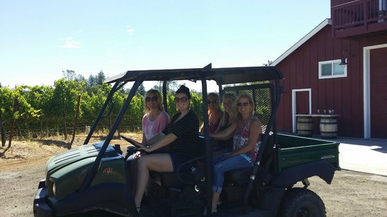 Wine Cube Tours: Wine Cube Tour at Trattore Estate and Dry Creek Olive Oil Co.