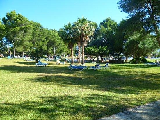 Exagon Park : la piscine