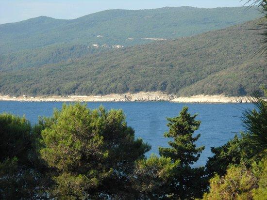 Marina Hotel: panorama