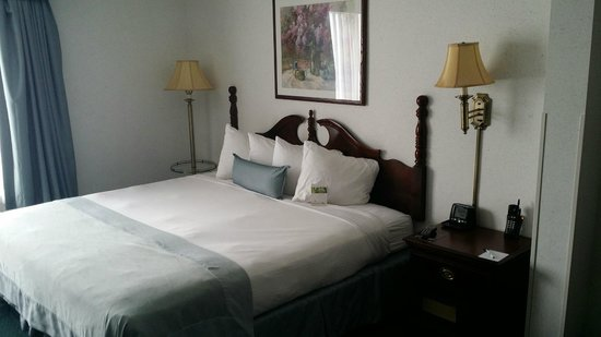 Wingate by Wyndham Duluth/Atlanta: Nice bed with clean sheets