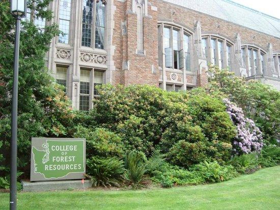 University of Washington: Um dos prédios da universidade