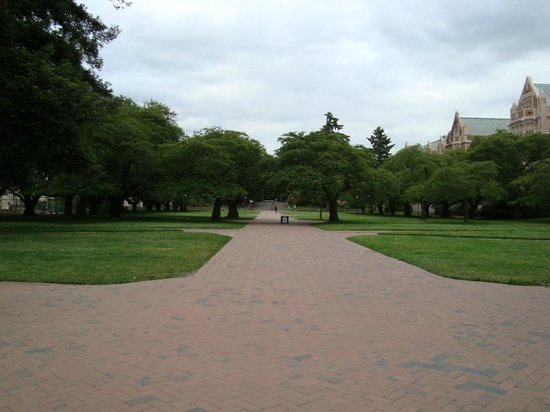 University of Washington: Caminhos dentro da universidade