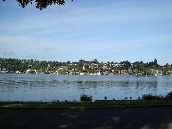 University of Washington: Vista do Lago