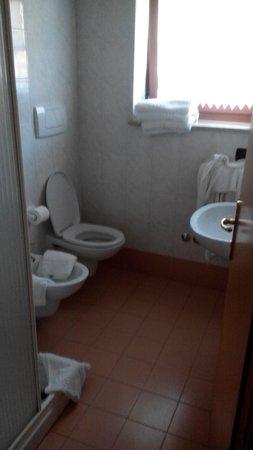 Hotel Pezzotti: bagno