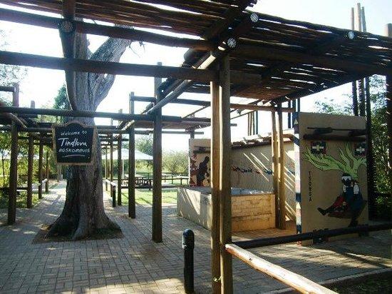 Satara Rest Camp : Tindlovu-restaurant op Restcamp Satara (april 2014)