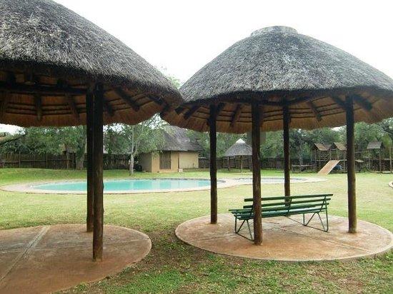 Satara Rest Camp: Het zwembad van Satara (april 2014)