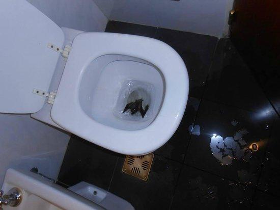 Ros Tower Hotel: Aca esta el murcielago nadando en su jacuzzi