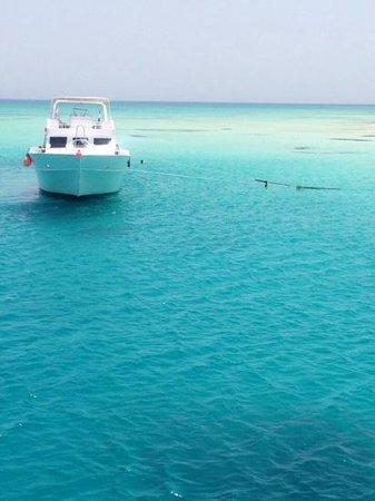 Le Royal Holiday Resort: snorkeling trip