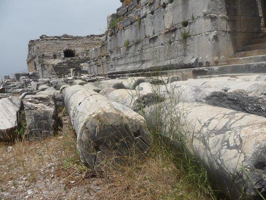 Miletus: fallen columns.