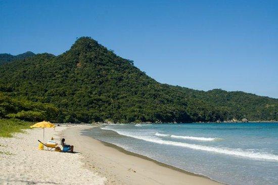 Dois Rios Village : Vista da parte esquerda da praia, onde um dos rios encontra o mar.