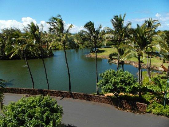 Marriott's Kauai Lagoons - Kalanipu'u: Property Lagoons