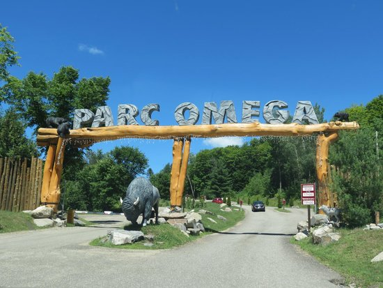 Omega Park: Entry to the park