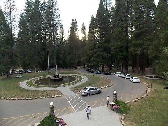 Big Trees Lodge: fountain