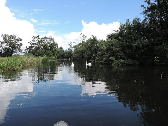 River Stour Boating: Perfect peace