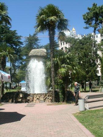 6 May Park
