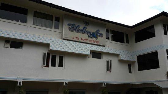Blueberry Inn : hotel