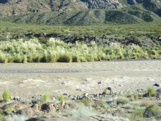 Potrerillos Dam: Río Mendoza