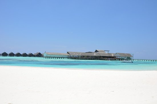 Lux Maldives Formerly Diva Island Resort And Spa