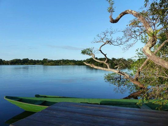 Juma Amazon Lodge : The view from the landing