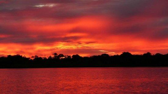 Juma Amazon Lodge : Sunset