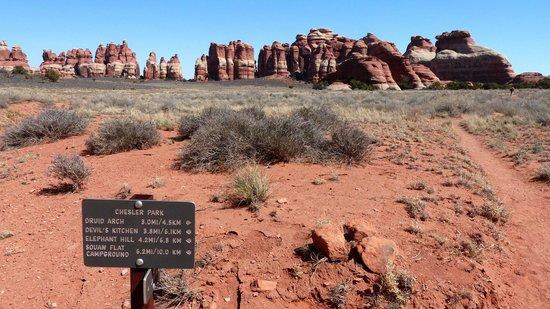 Chesler Park Loop Trail: Auf dem Hochplateau