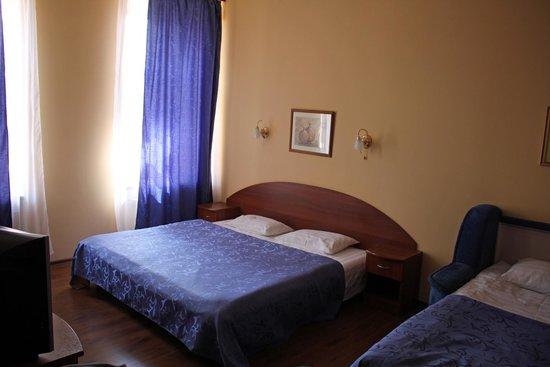 Hotel Grifon: the room
